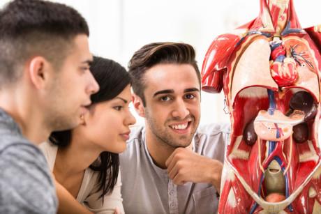 vorbereitungskurs fuer das Medizinstudium